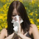 alergia i astma herbata Gonseen w programach zdrowotnych