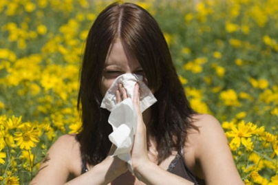 Herbata Gonseen pomocna w alergiach i astmie